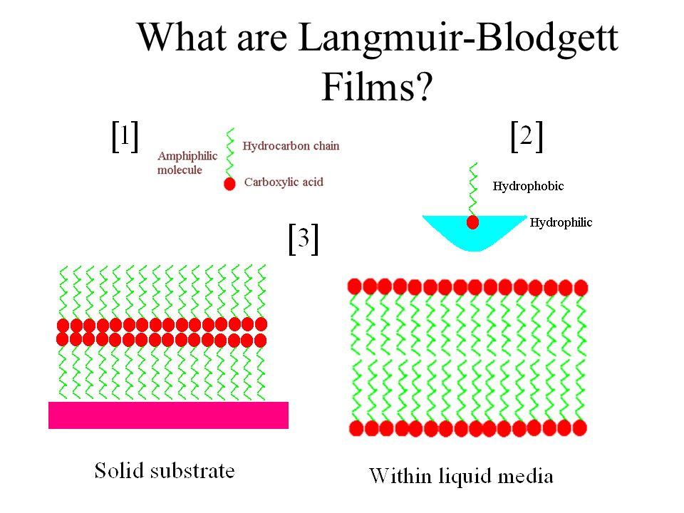 What are Langmuir-Blodgett Films
