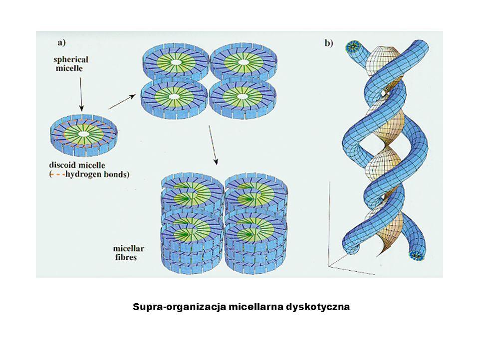 Supra-organizacja micellarna dyskotyczna