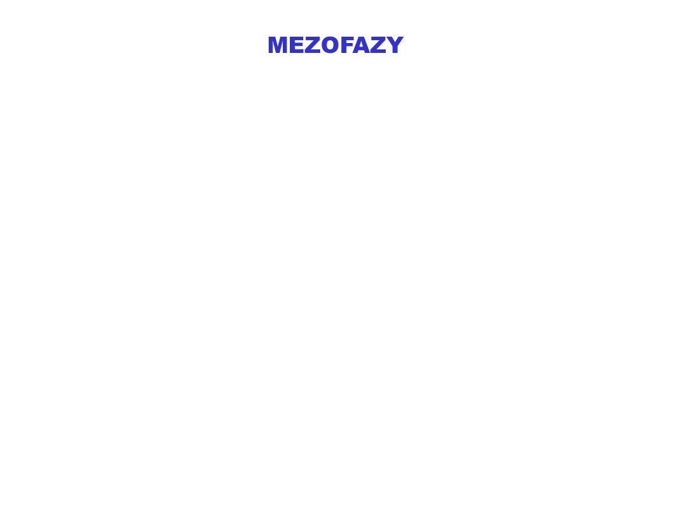 MEZOFAZY