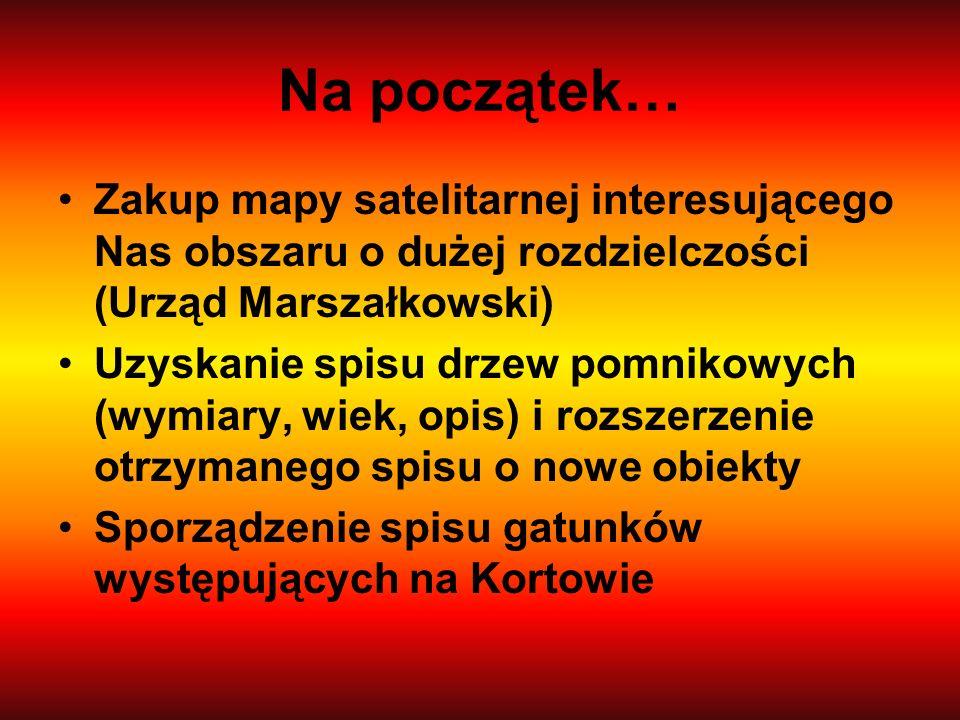 Na początek… Zakup mapy satelitarnej interesującego Nas obszaru o dużej rozdzielczości (Urząd Marszałkowski)