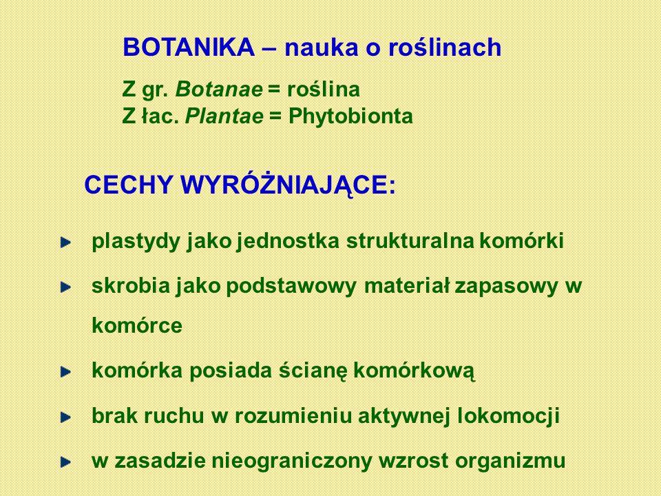 BOTANIKA – nauka o roślinach