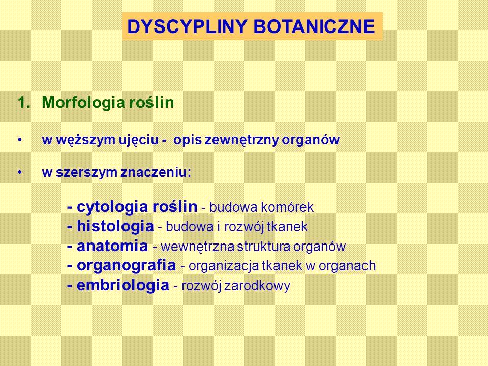 DYSCYPLINY BOTANICZNE