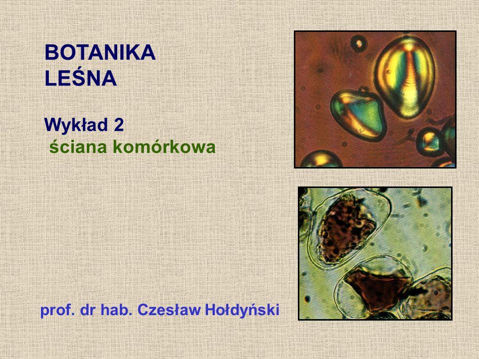 BOTANIKA LEŚNA Wykład 2 ściana komórkowa
