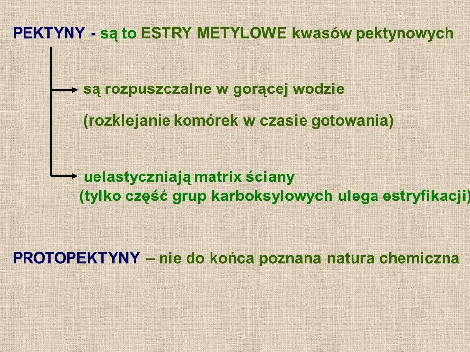 PEKTYNY - są to ESTRY METYLOWE kwasów pektynowych