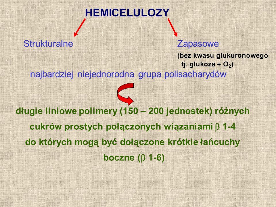 HEMICELULOZY Strukturalne Zapasowe (bez kwasu glukuronowego