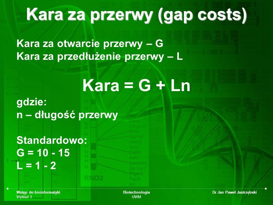 Kara za przerwy (gap costs)