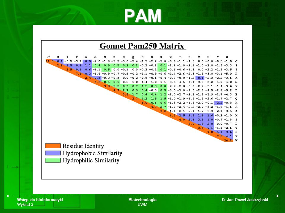 PAM Wstęp do bioinformatyki Wykład 3 Biotechnologia UWM