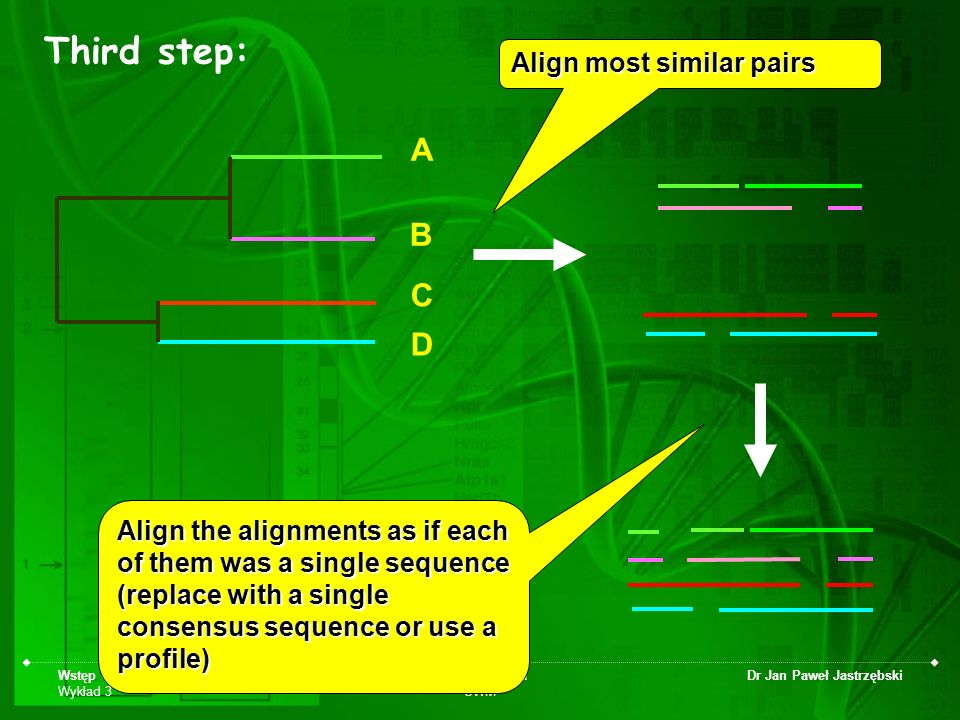 Third step: A B C D Align most similar pairs
