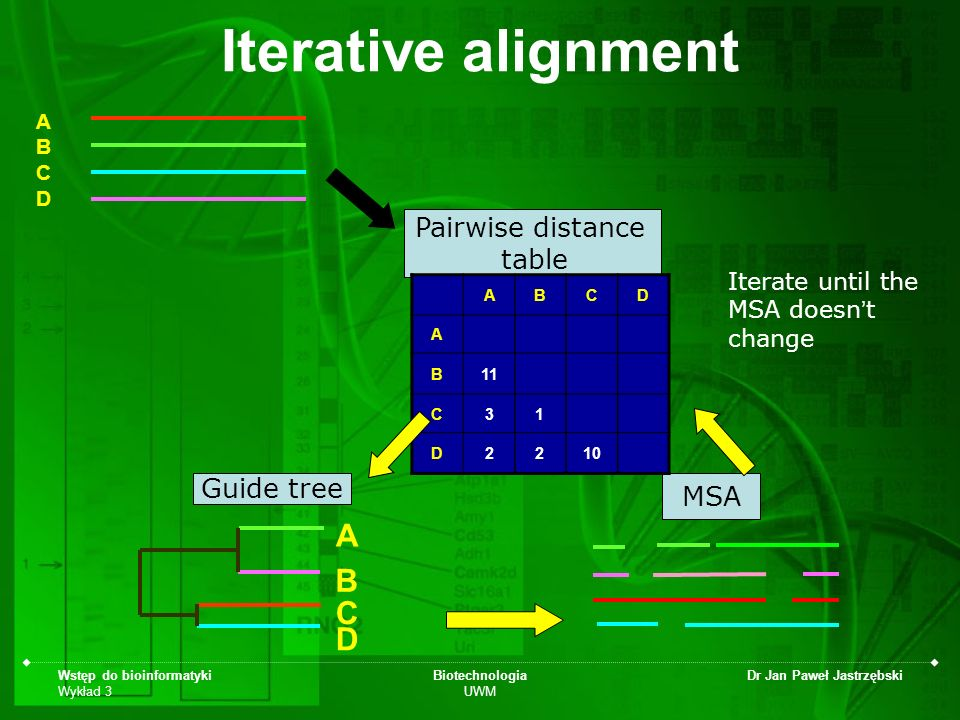 Iterative alignment A B C D Pairwise distance table Guide tree MSA