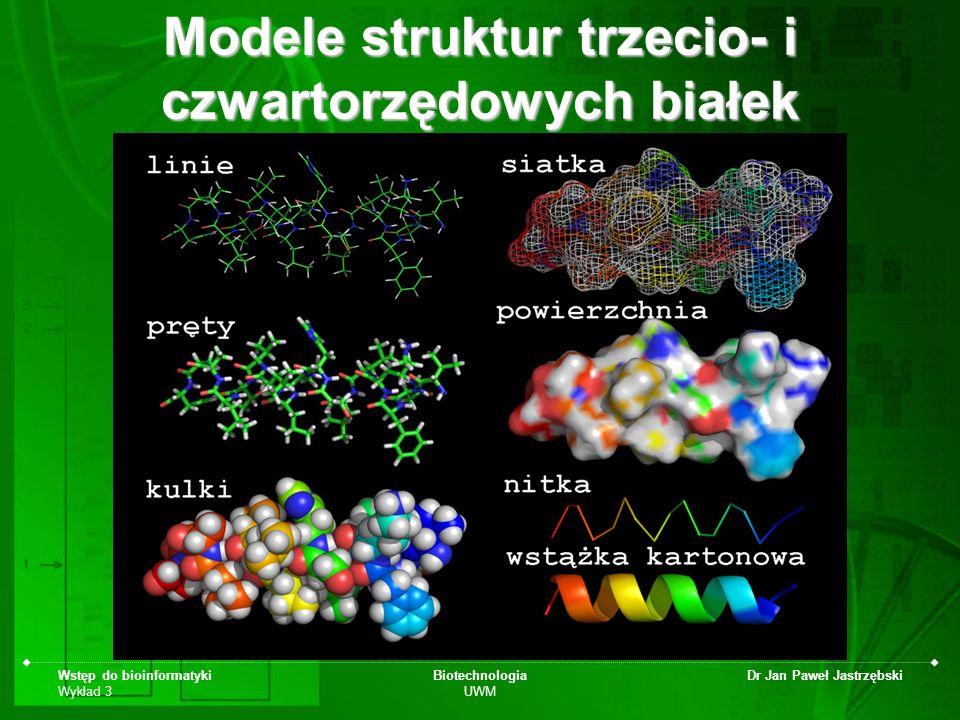 Modele struktur trzecio- i czwartorzędowych białek