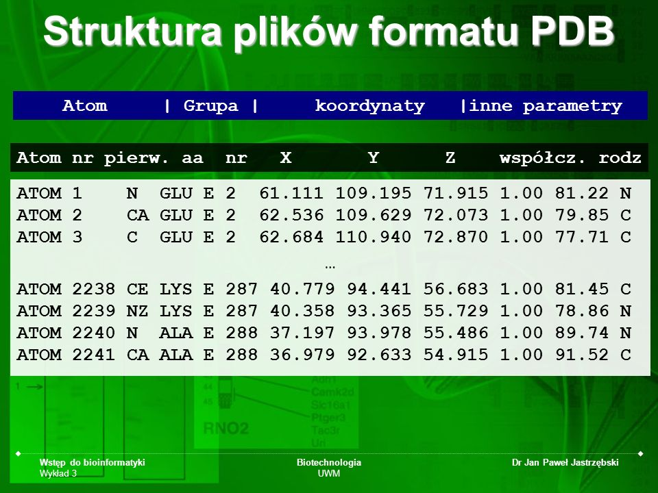 Struktura plików formatu PDB