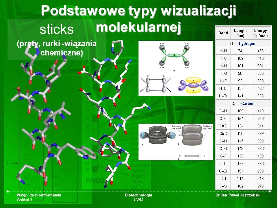 Podstawowe typy wizualizacji molekularnej