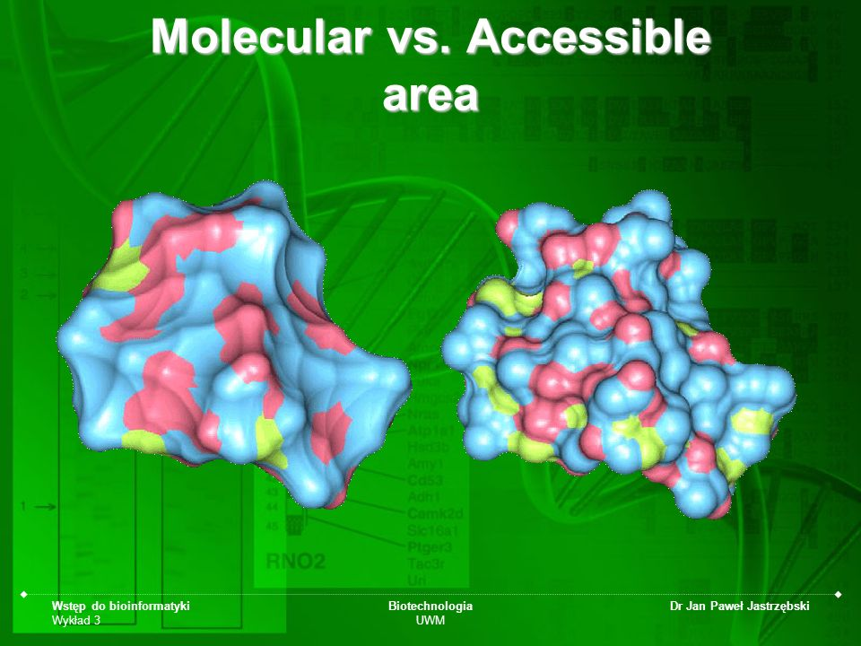 Molecular vs. Accessible area