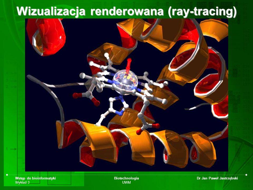 Wizualizacja renderowana (ray-tracing)
