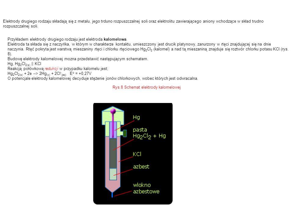 Rys.8 Schemat elektrody kalomelowej
