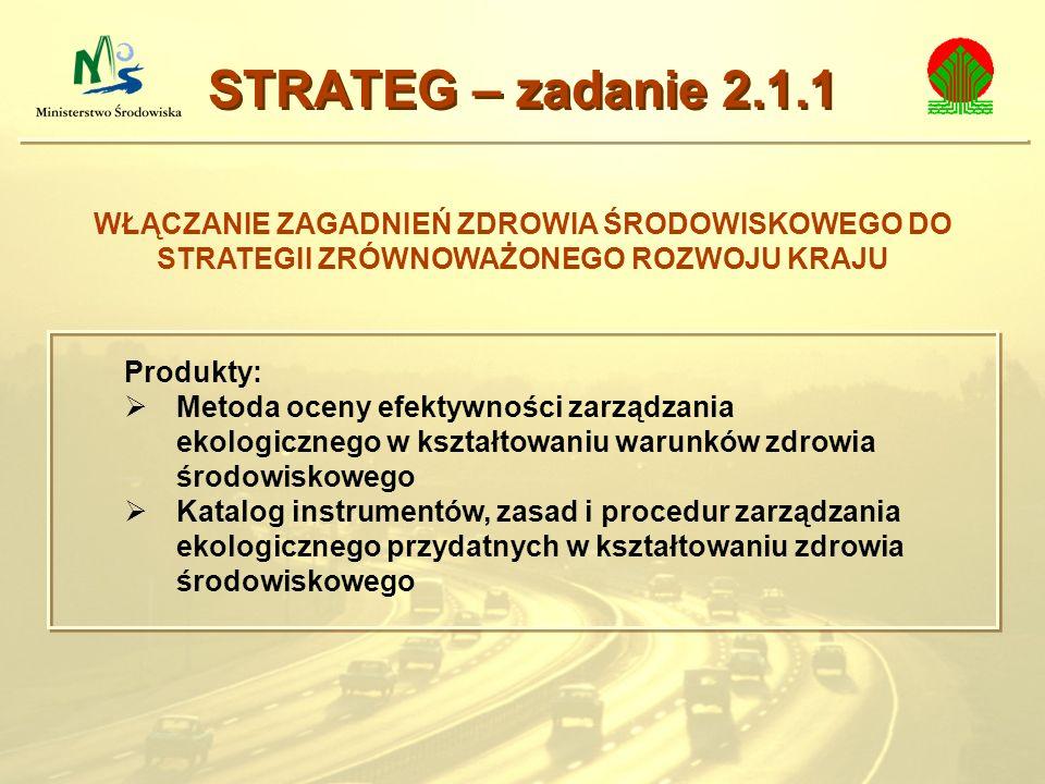 STRATEG – zadanie 2.1.1 WŁĄCZANIE ZAGADNIEŃ ZDROWIA ŚRODOWISKOWEGO DO STRATEGII ZRÓWNOWAŻONEGO ROZWOJU KRAJU.