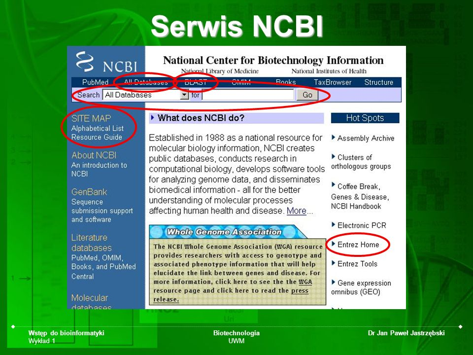 Serwis NCBI Wstęp do bioinformatyki Wykład 1 Biotechnologia UWM