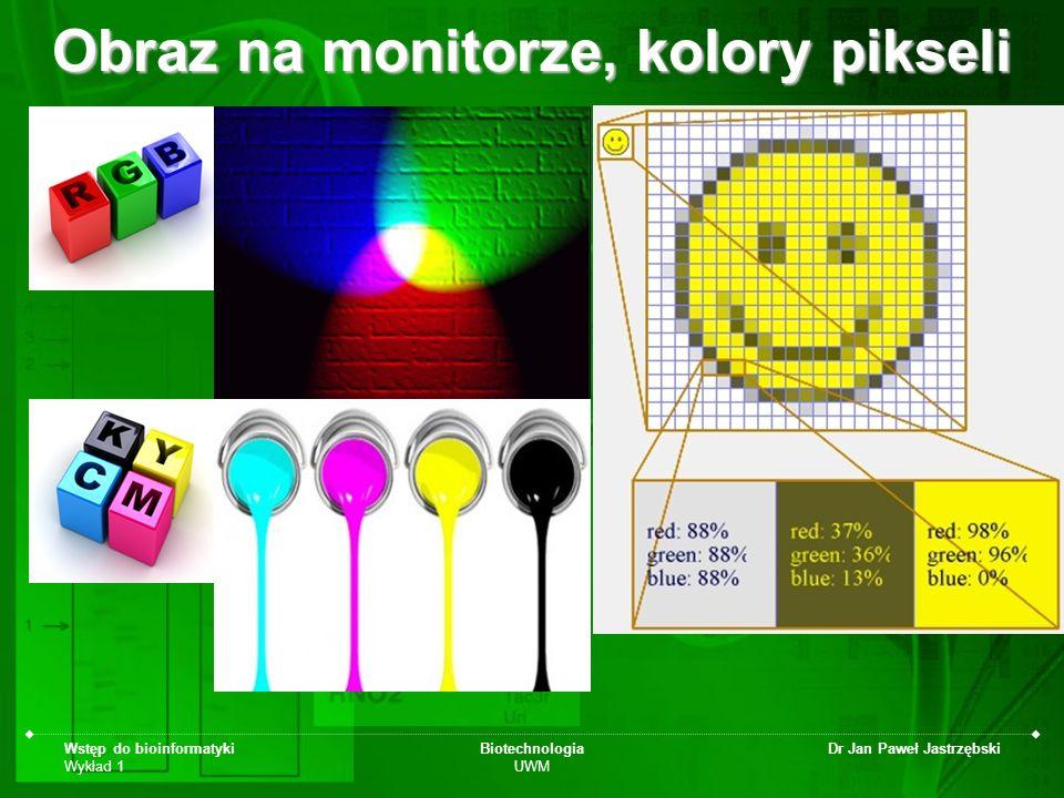 Obraz na monitorze, kolory pikseli