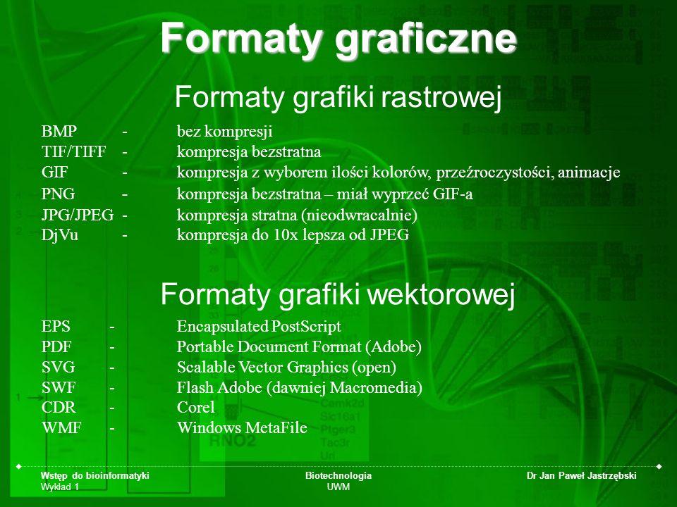 Formaty graficzne Formaty grafiki rastrowej Formaty grafiki wektorowej