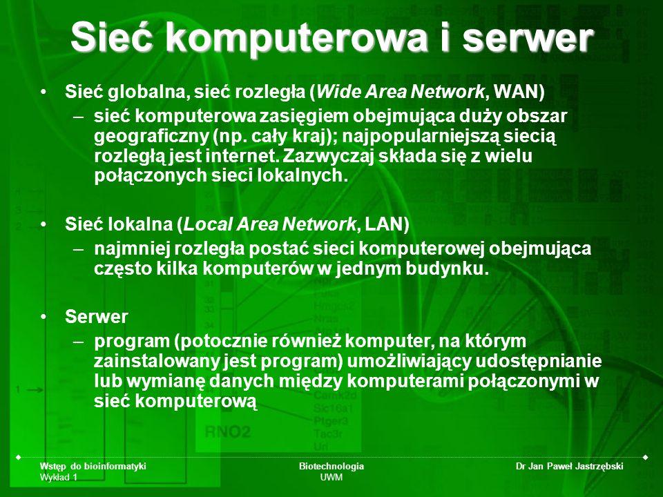 Sieć komputerowa i serwer