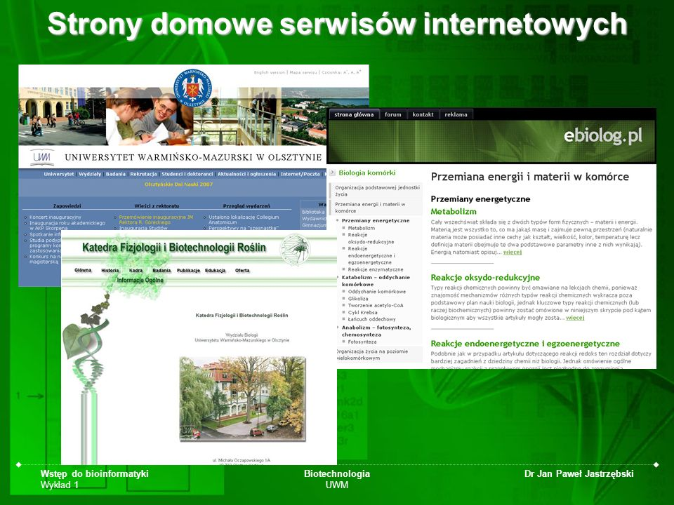 Strony domowe serwisów internetowych