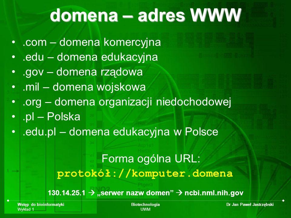 domena – adres WWW .com – domena komercyjna .edu – domena edukacyjna