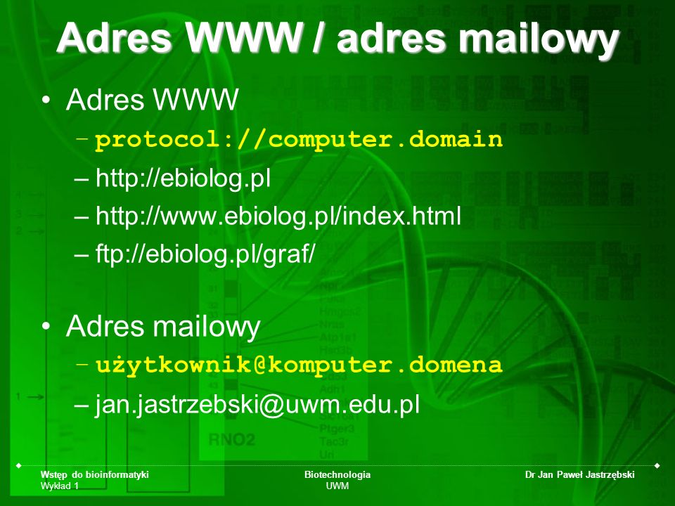 Adres WWW / adres mailowy
