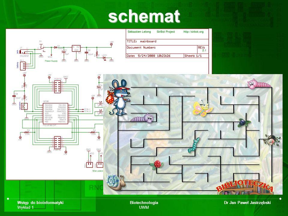 schemat Wstęp do bioinformatyki Wykład 1 Biotechnologia UWM