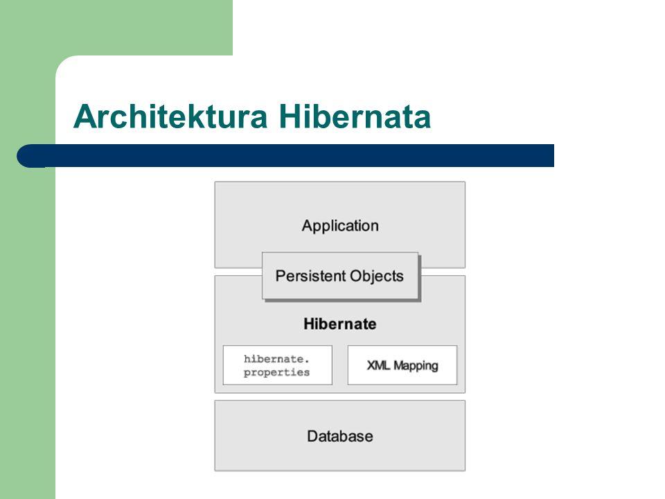 Architektura Hibernata