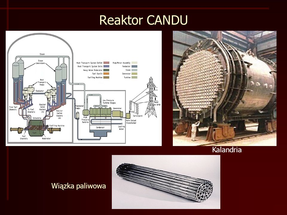 Reaktor CANDU Kalandria Wiązka paliwowa