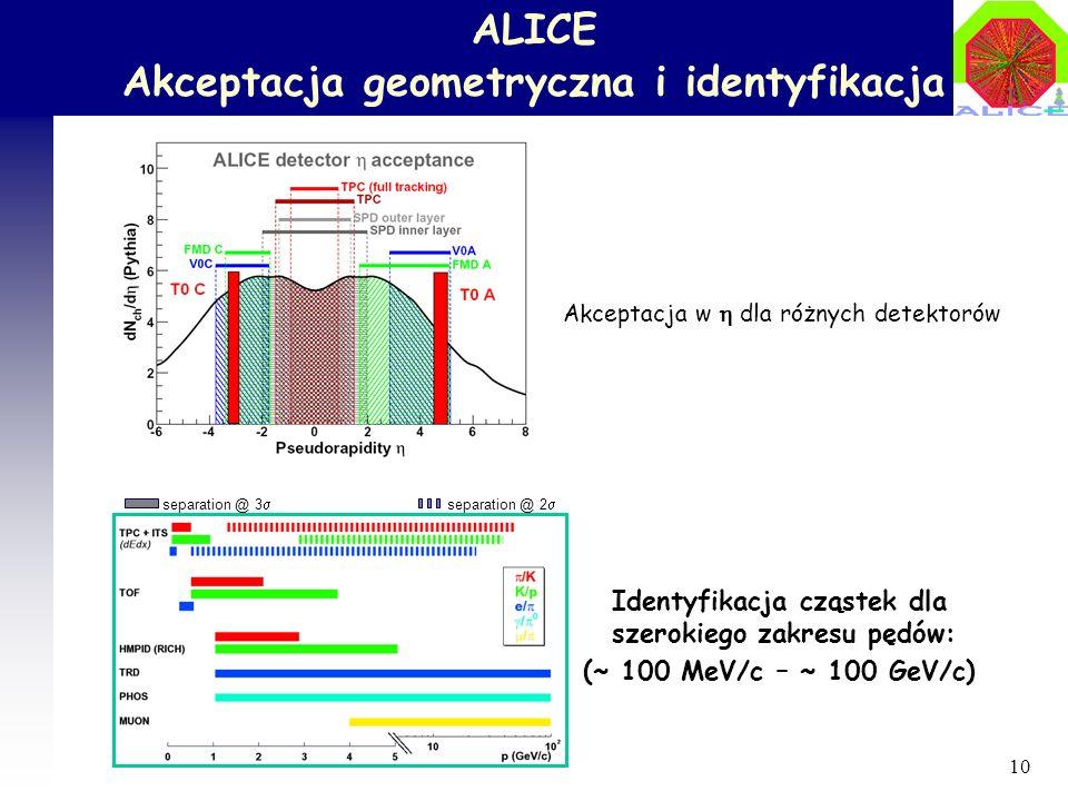 ALICE Akceptacja geometryczna i identyfikacja