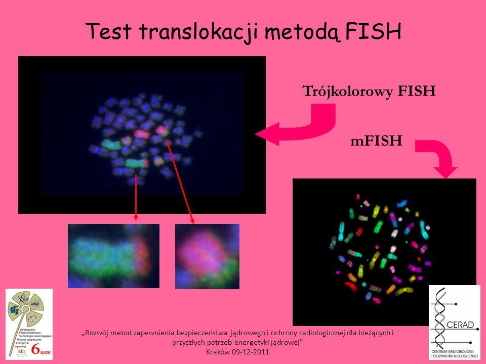 Test translokacji metodą FISH