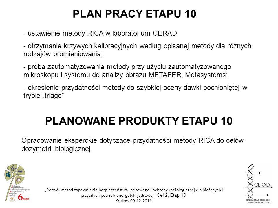PLANOWANE PRODUKTY ETAPU 10
