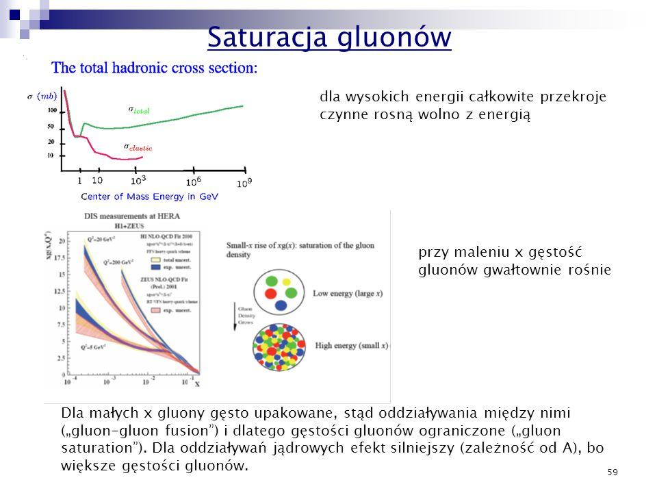 Saturacja gluonów dla wysokich energii całkowite przekroje czynne rosną wolno z energią. przy maleniu x gęstość gluonów gwałtownie rośnie.