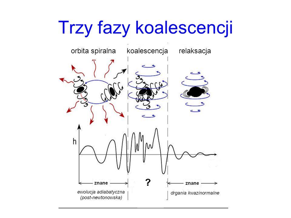 Trzy fazy koalescencji