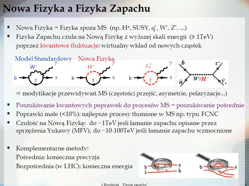 Nowa Fizyka a Fizyka Zapachu
