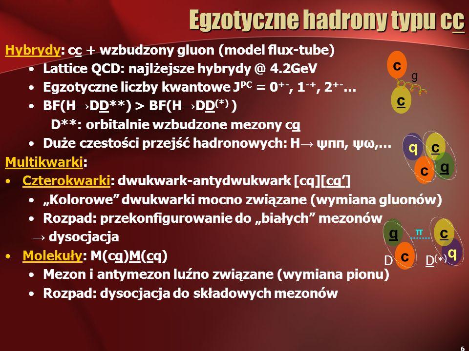 Egzotyczne hadrony typu cc