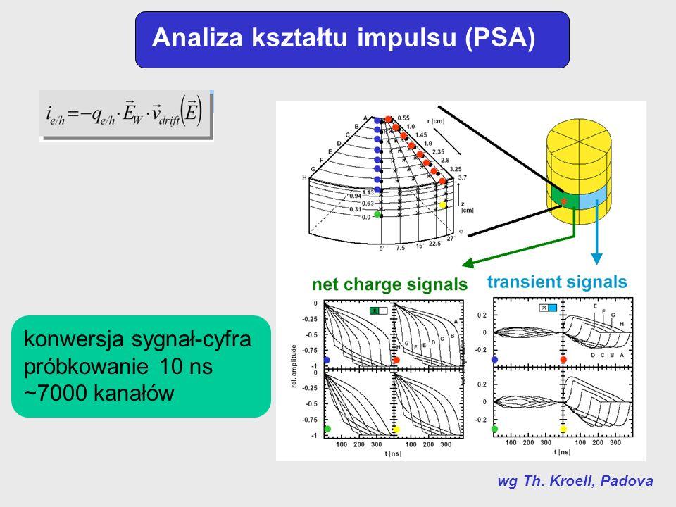Analiza kształtu impulsu (PSA)
