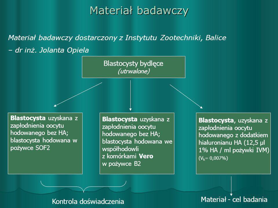 Materiał badawczy Materiał badawczy dostarczony z Instytutu Zootechniki, Balice. – dr inż. Jolanta Opiela.