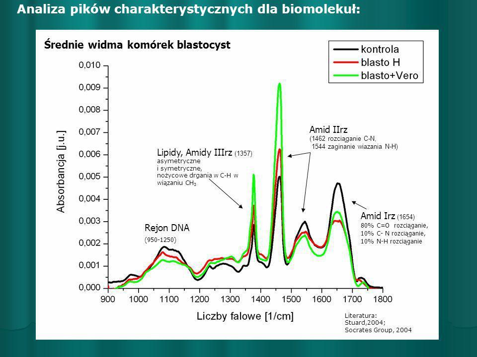 Analiza pików charakterystycznych dla biomolekuł:
