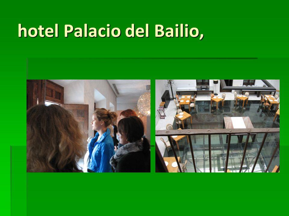 hotel Palacio del Bailio,