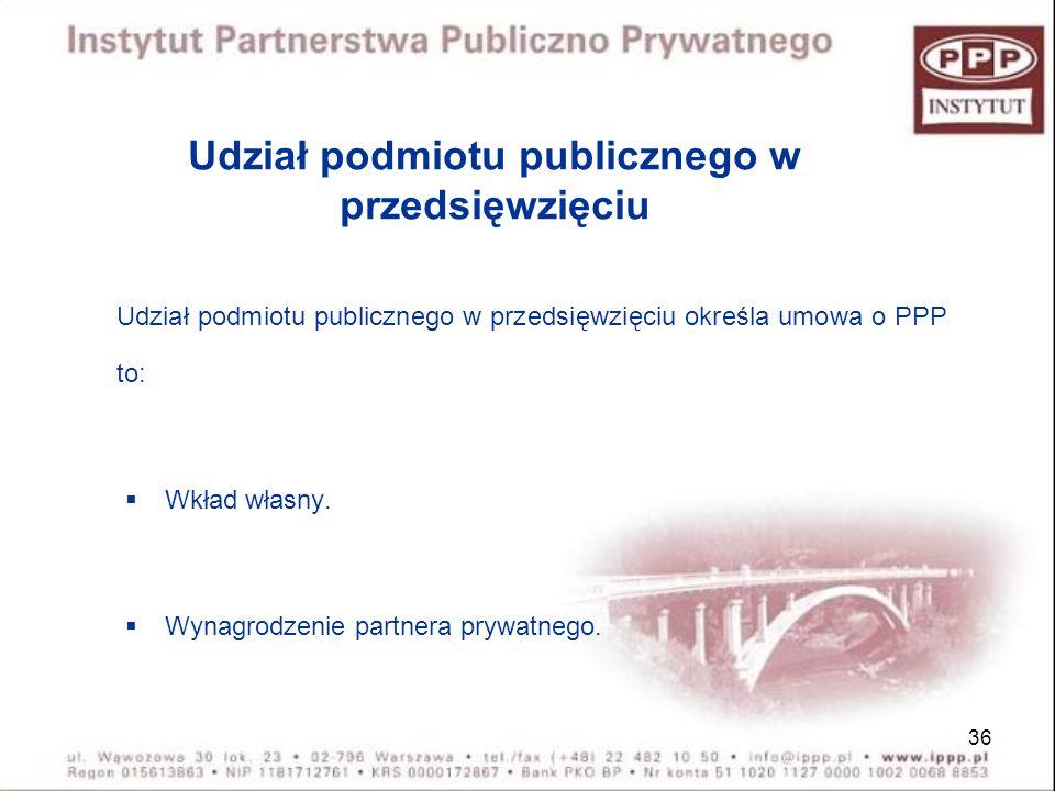 Udział podmiotu publicznego w przedsięwzięciu