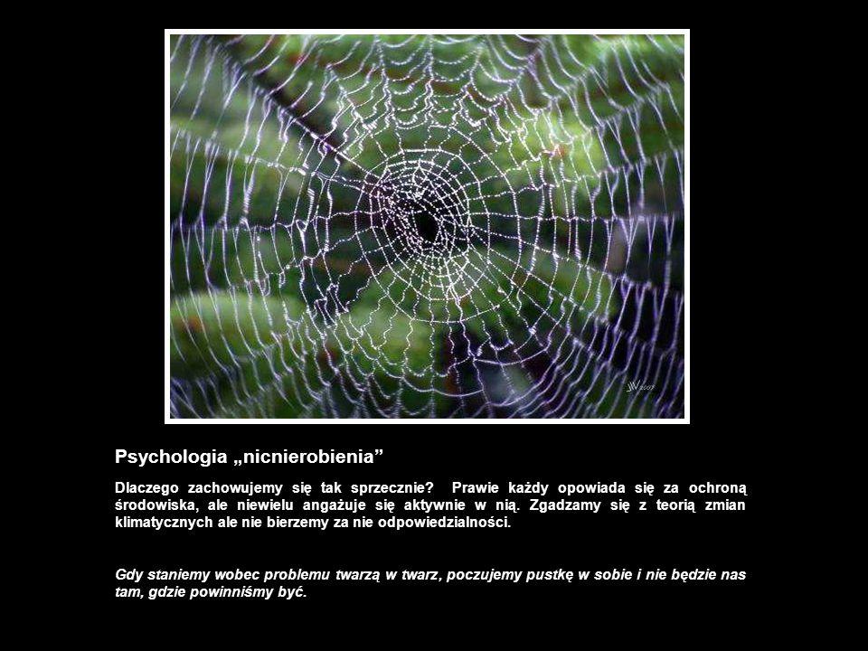 """Psychologia """"nicnierobienia"""