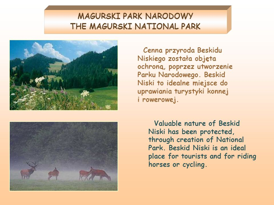 MAGURSKI PARK NARODOWY THE MAGURSKI NATIONAL PARK