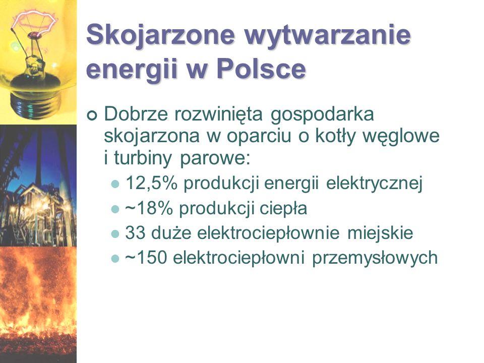 Skojarzone wytwarzanie energii w Polsce