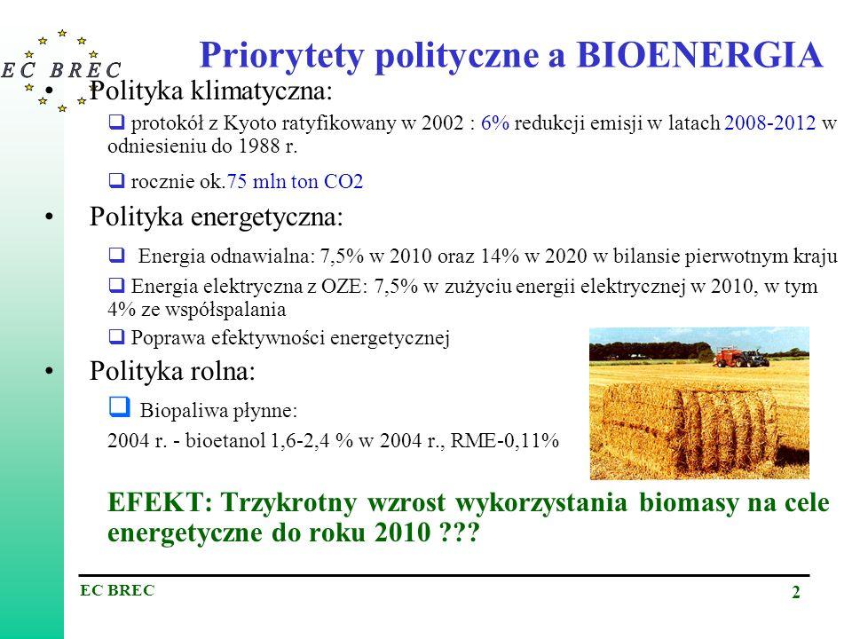 Priorytety polityczne a BIOENERGIA