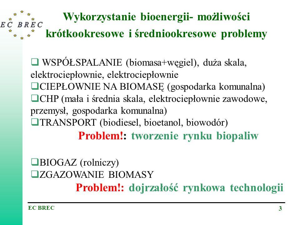 Wykorzystanie bioenergii- możliwości