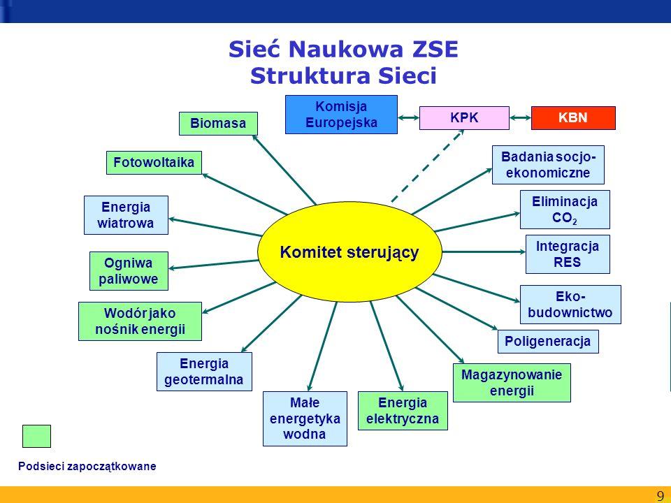 Sieć Naukowa ZSE Struktura Sieci