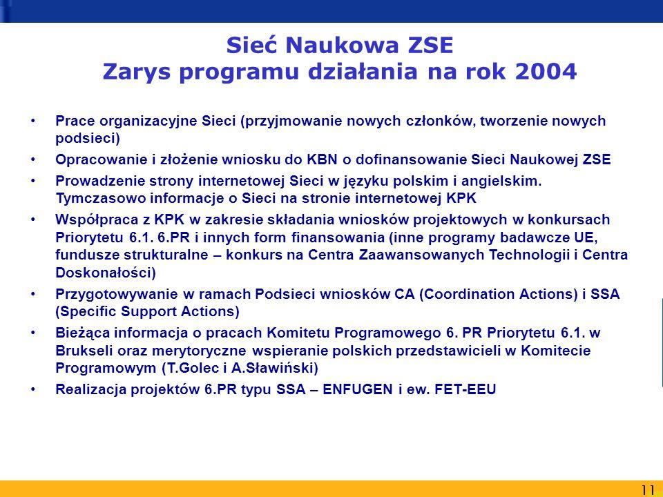 Sieć Naukowa ZSE Zarys programu działania na rok 2004