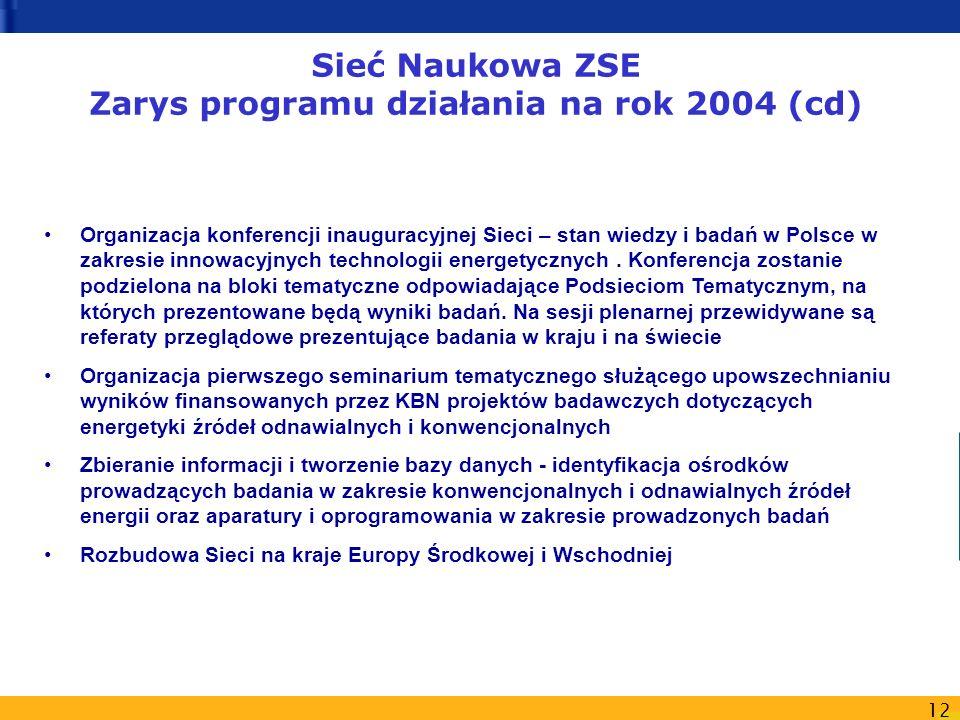 Sieć Naukowa ZSE Zarys programu działania na rok 2004 (cd)